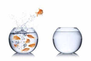 Accueillir le trouble qui précède le changement